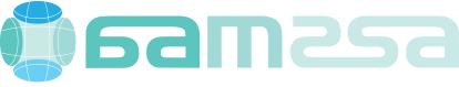 AAMSSA Logo